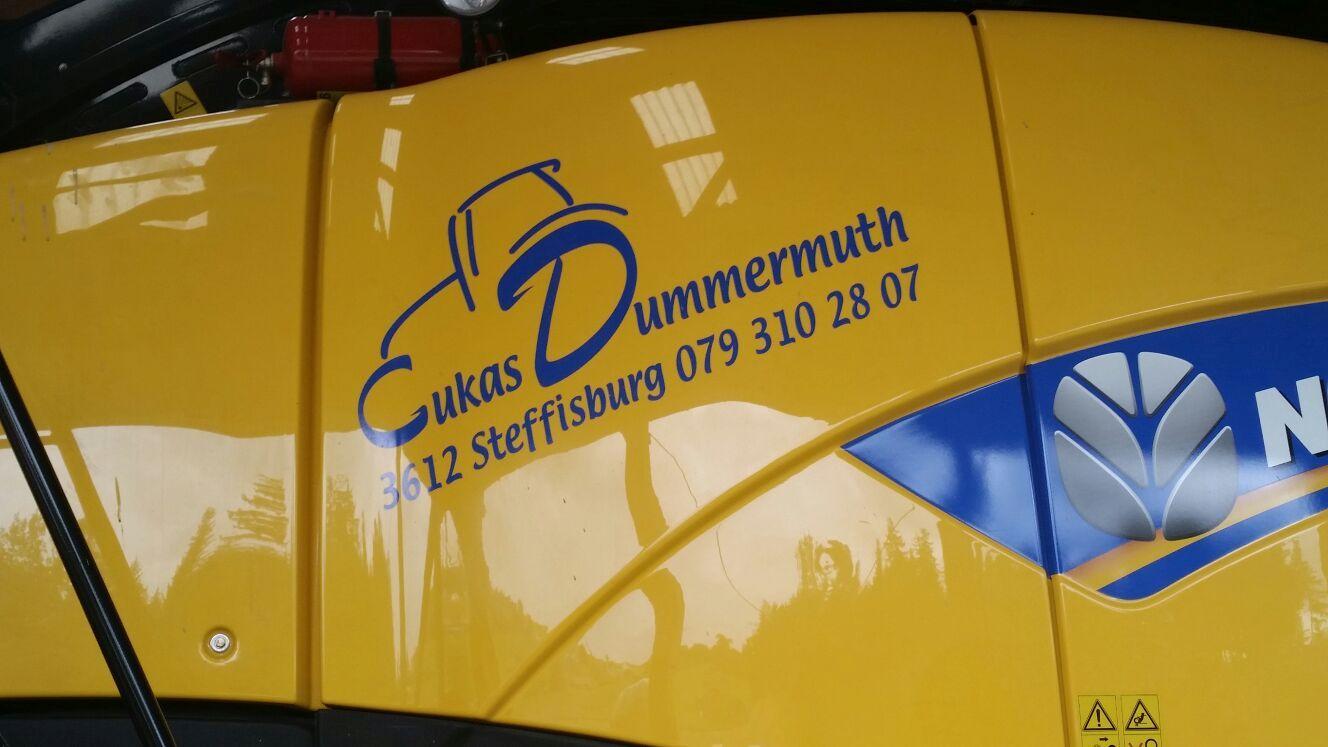 Dummermuth Lukas (2)