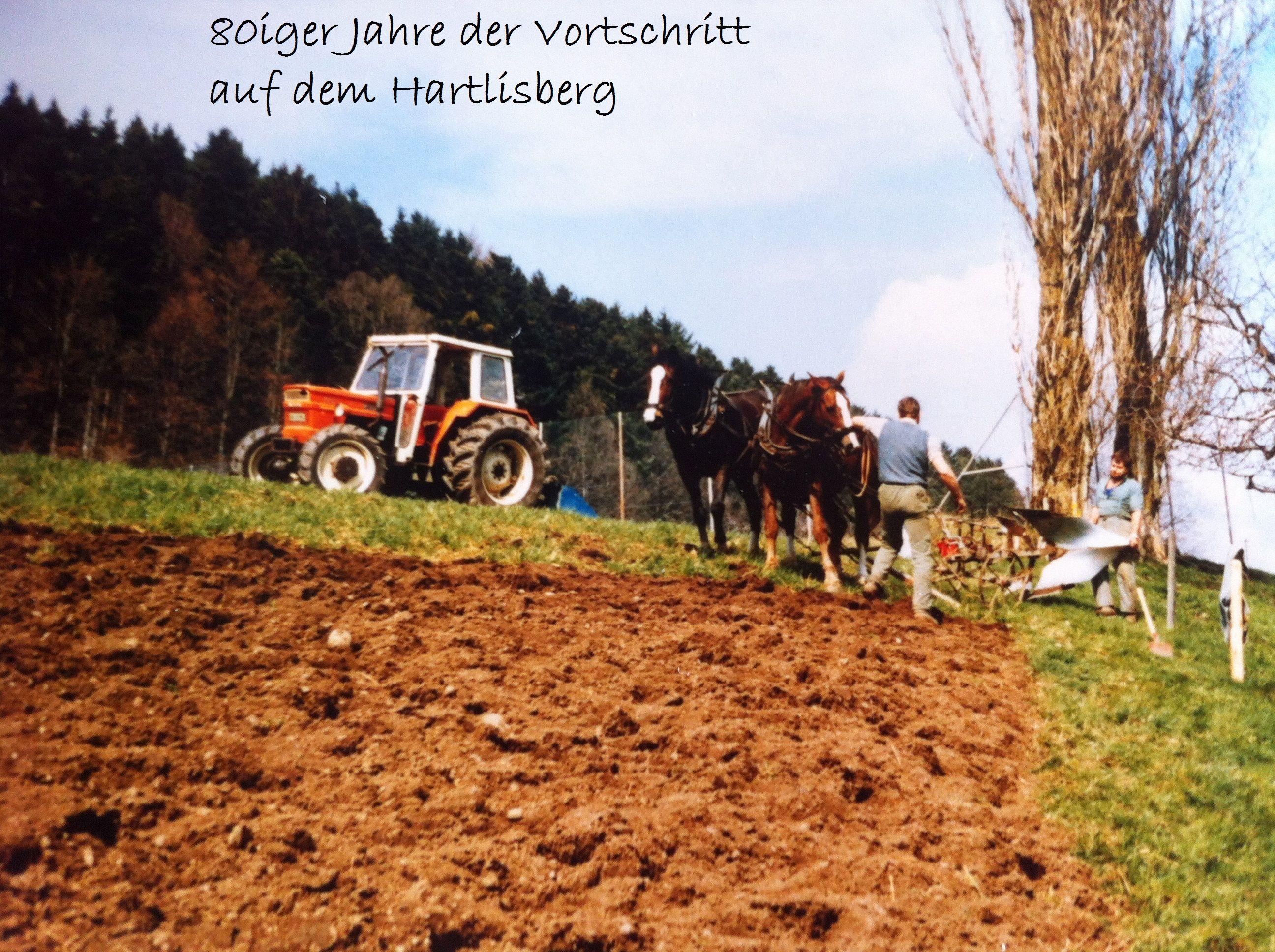 Luginbühl H.C. (10)
