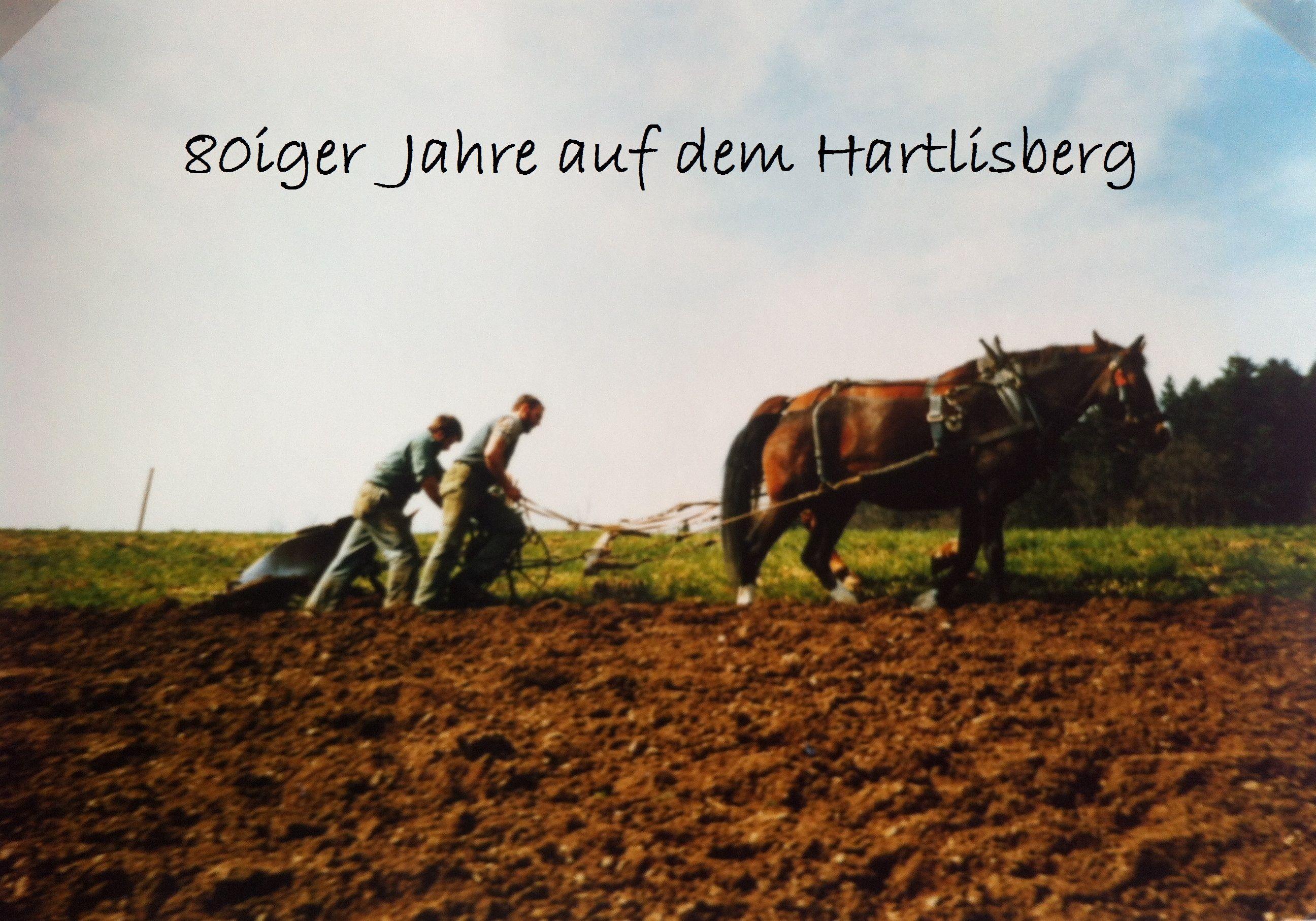 Luginbühl H.C. (9)