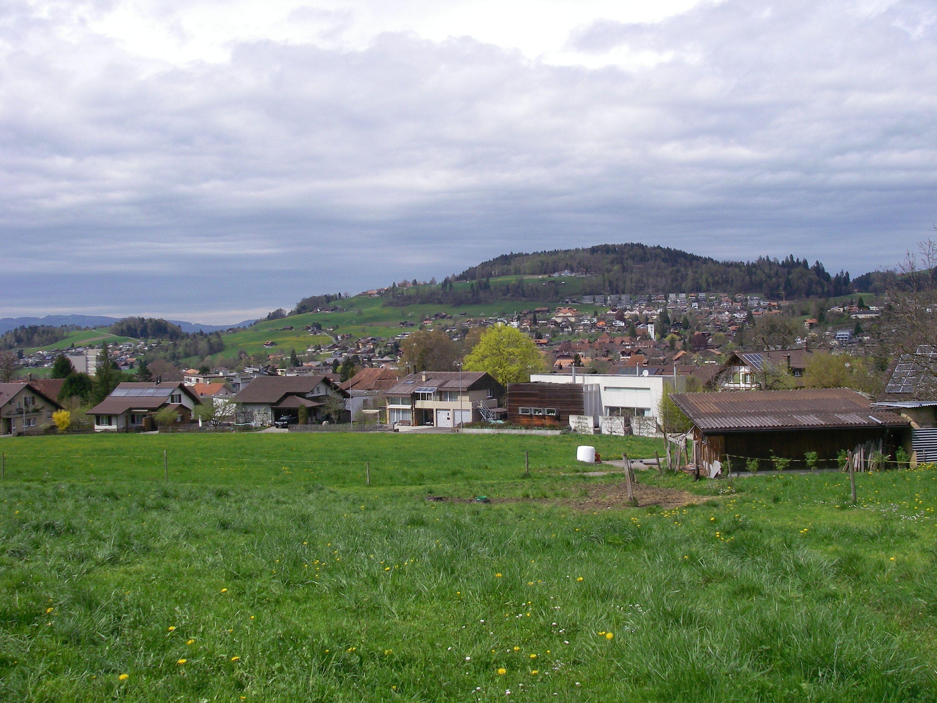 Schmutz M. R.  (11)